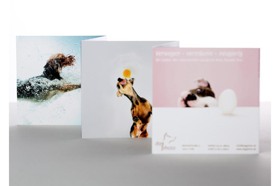 Imagefolder Leporello für dogphoto gestaltet von stefanie lombert : grafikdesign Hannover